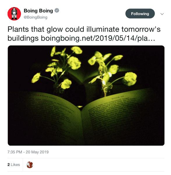 PlantsThatGlow